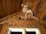 Innertak rivs med fördel på kallare årstider