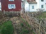 Risgärdesgård runt jordgubbslandet